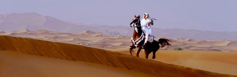 Dubai Horse