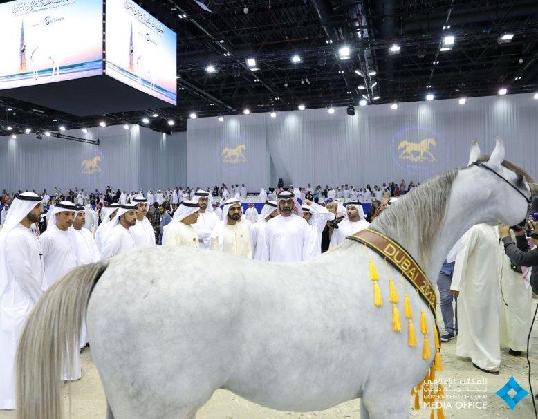 DubaiHorseFair